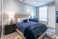 The Boulevard - 1 Bed 1 Bath - Bedroom