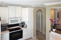 The Apartment Resource - 19 -