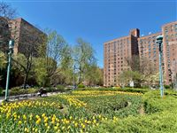 Parkchester Bronx Realty - 2 -
