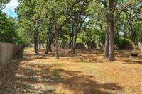 1504-Saddle-Lane-backyard-1