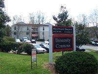 Wilson Property Management - 19 -