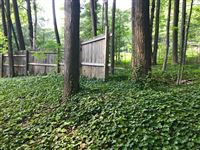Partial Fenced-In Backyard