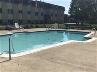 holiday pool 4