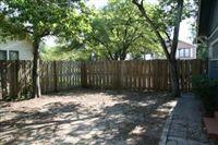 back yard IMG_0189