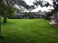Our beautiful backyard!