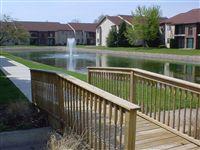 Beautiful pond views