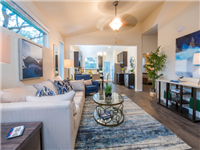 ATX Apartments & Realty - 7 -