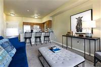 Austin Apartment Locator - 5 -