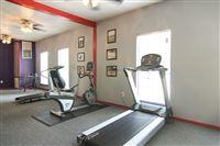 WT Fitness