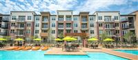Apartment Selector - Dallas - 16 -
