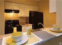 Tanner Properties - 19 -