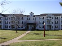Beauty surrounds you and your apartment home at Fairfax Apartments