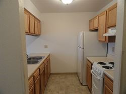 New updated kitchens with energy star appliances