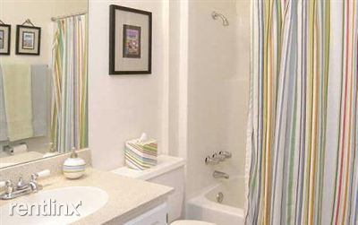 Masterbathroom tub2