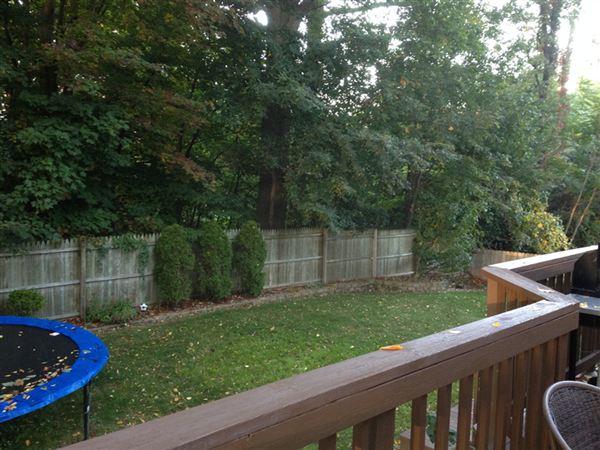 fenced back yard w nice deck
