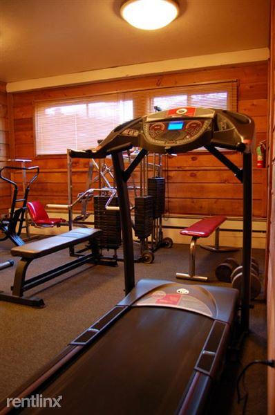 1336-gym2