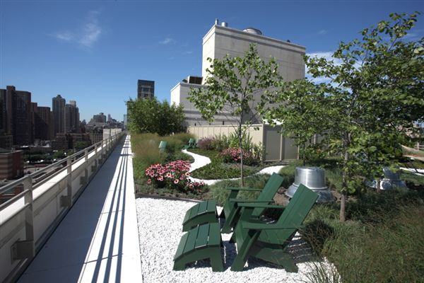Green Roof Park - Looking South