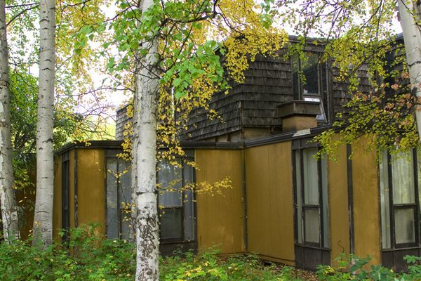 Yak: Exterior view Along Woods