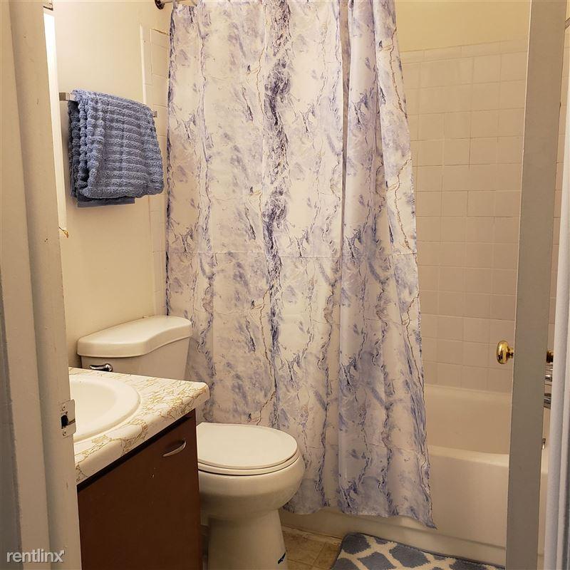 Okemos Village Apartments - 4 - Bathroom