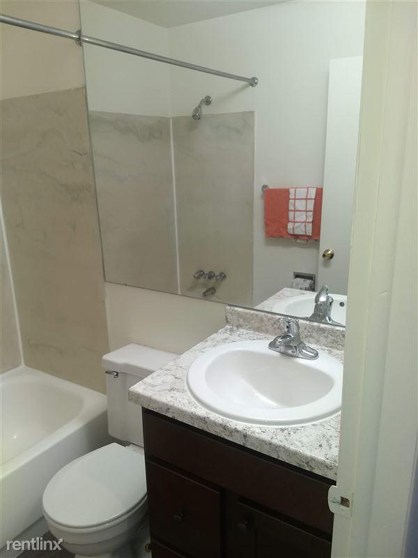 Okemos Village Apartments - 6 - Bathroom