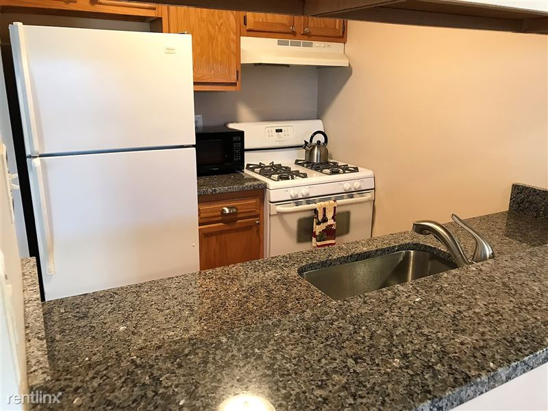 Flex-Lease/Furnished Condo w/ Den and Basement - 9 - IMG_0342