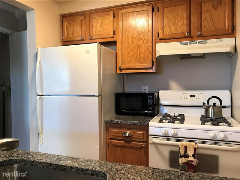 Flex-Lease/Furnished Condo w/ Den and Basement - 10 - IMG_0343