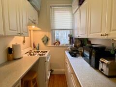10 Orkney Rd - 3 - 48824898