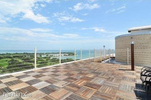 3950 N Lake Shore Dr Apt 921 - 4 - roof top - Copy