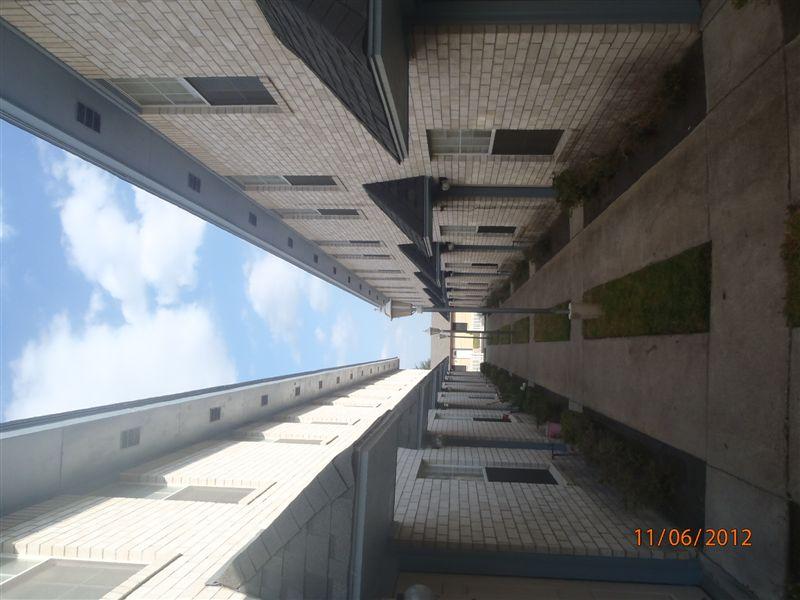 Danubia Apartments 5317 N 17th St Mcallen Tx
