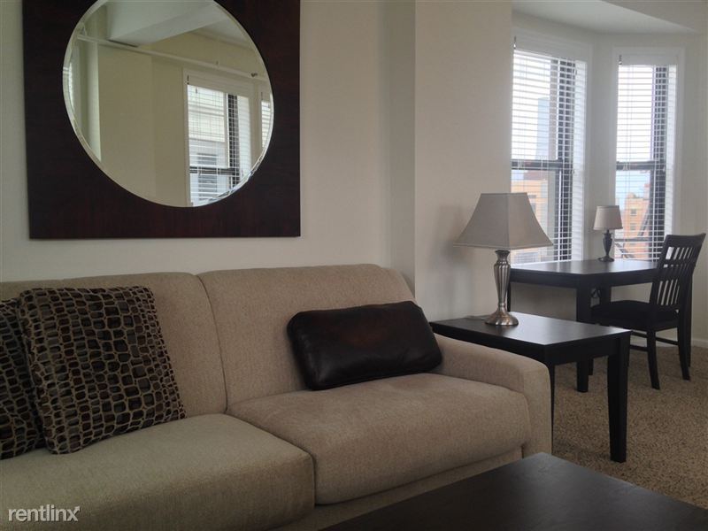 Downtown Detroit Furnished @ The Ashley - 11 - 2015-03-26 16.59.56