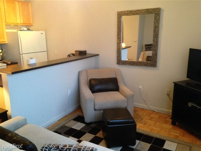 Furnished Turnkey/Flex-Lease - Downtown Detroit - 3 - 2015-12-05 16.49.45