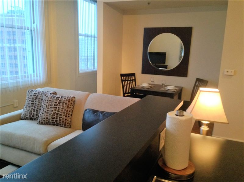 Furnished Turnkey/Flex-Lease - Downtown Detroit - 6 - 2015-12-05 16.49.27