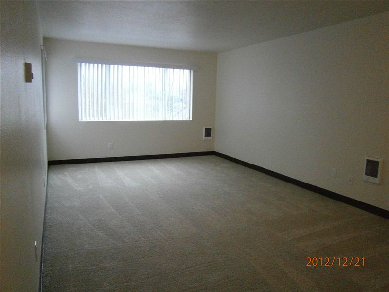 Large Living Room with new flooring and window