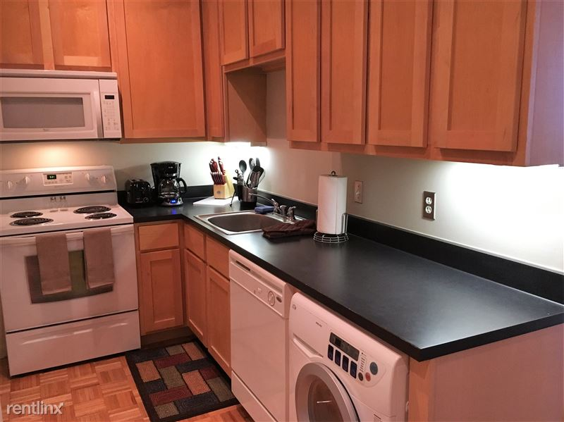 Furnished Turnkey/Flex-Lease - Downtown Detroit - 22 - 2016-06-16 17.32.29