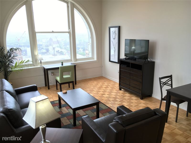 Furnished Turnkey/Flex-Lease - Downtown Detroit - 10 - 2016-06-16 16.53.08 HDR
