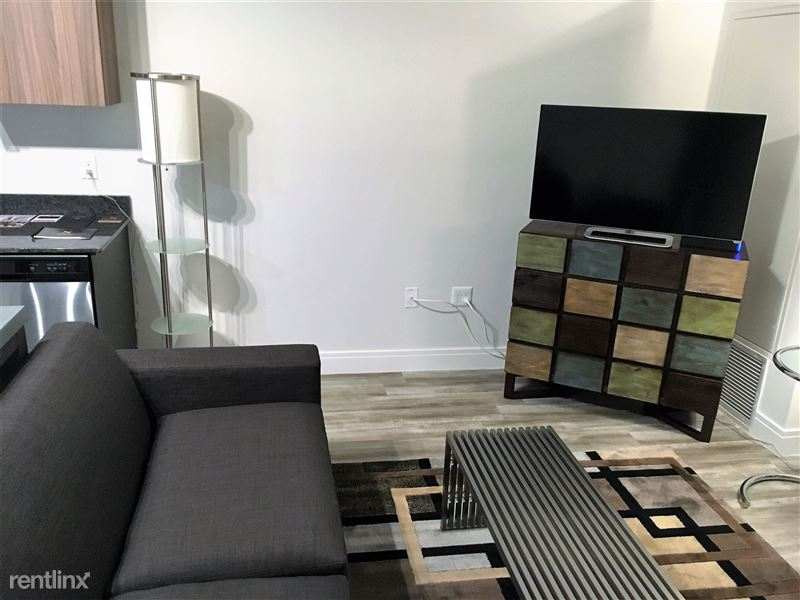 Detroit Flex-Lease/Furnished @ Scott at Brush Park - 2 - Suite 530 - Art coming for that open space