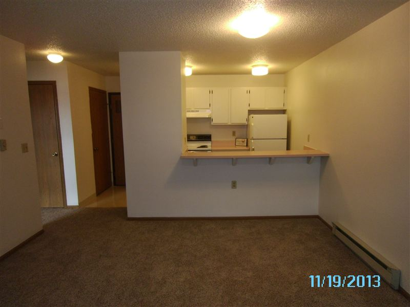 Conveinent Bar separting Kitchen and Living Room.