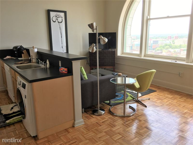 Furnished Turnkey/Flex-Lease - Downtown Detroit - 8 - IMG_1379