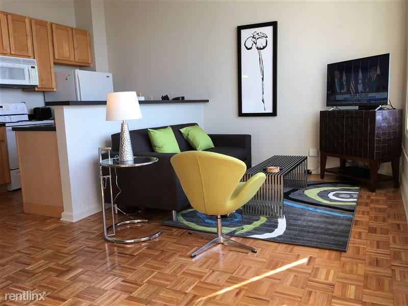 Furnished Turnkey/Flex-Lease - Downtown Detroit - 2 - IMG_1355