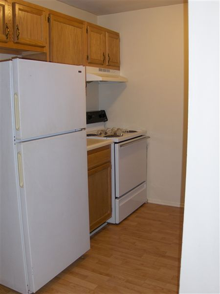 Garden Court Apartments and Townhomes - 4 - Updated kitchen