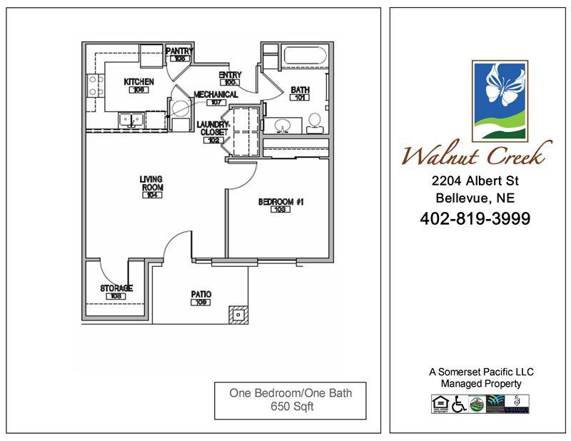 Walnut creek apartments 2204 albert st bellevue ne show me the rent for One bedroom apartments bellevue ne