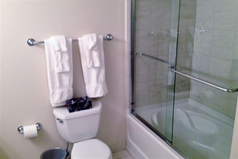 LMR shower (Large)