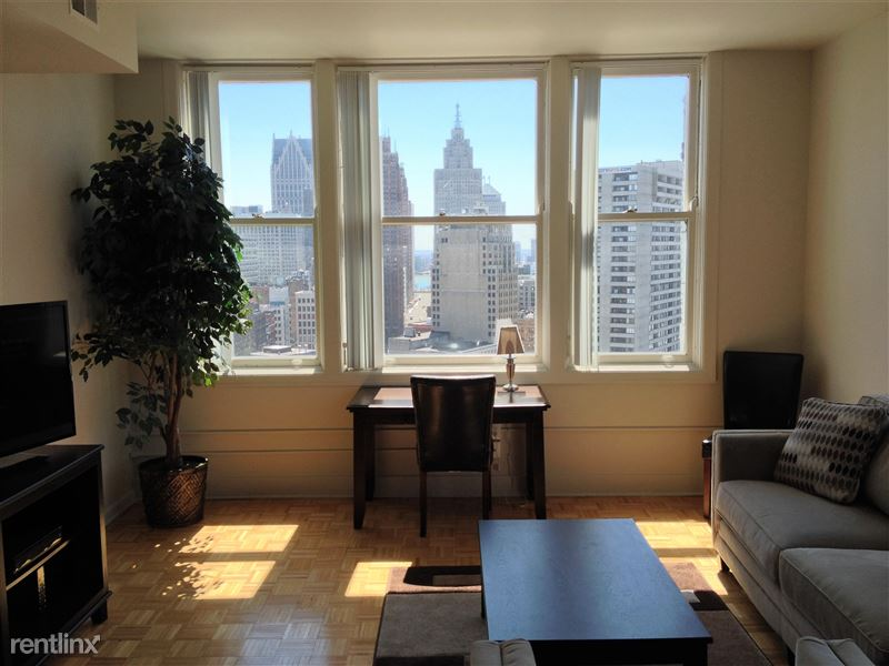 Furnished Turnkey/Flex-Lease - Downtown Detroit - 7 - IMG_3316