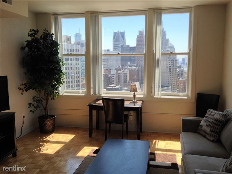 Furnished Turnkey/Flex-Lease - Downtown Detroit - 8 - IMG_3318