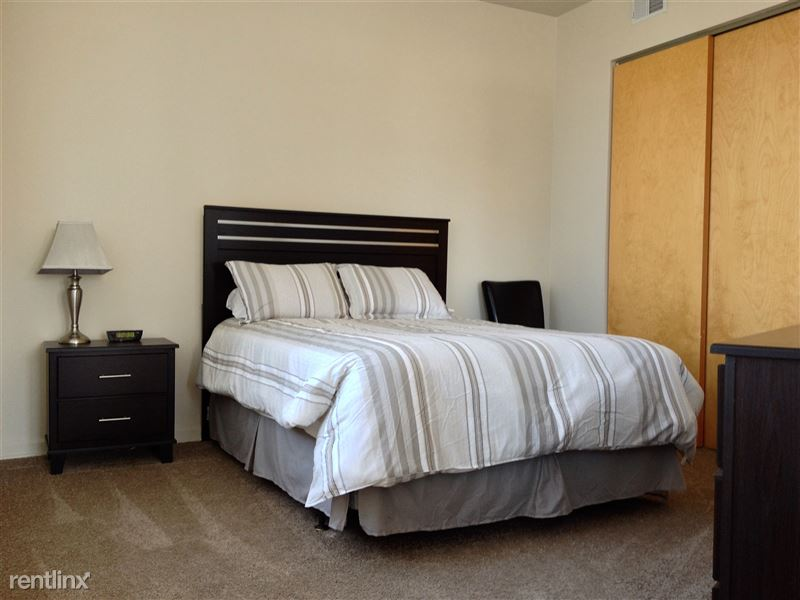 Furnished Turnkey/Flex-Lease - Downtown Detroit - 35 - IMG_3332
