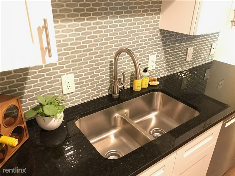 New stainless steel under-mount sink and pull-down faucet