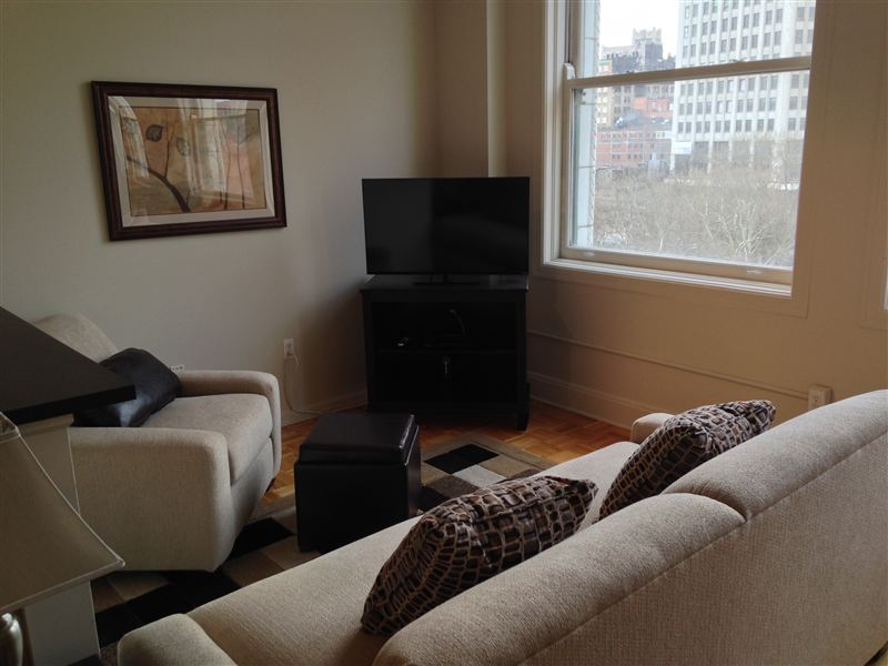 Furnished Turnkey/Flex-Lease - Downtown Detroit - 3 - 3 TV