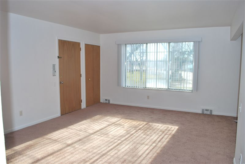 North Shore Apartments - 1 - Large Bright Apartment