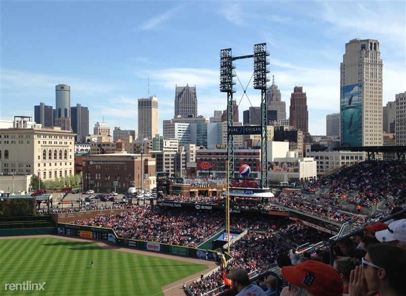 View From Comerica Park