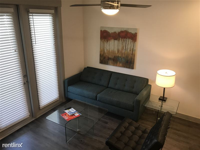 Nashville TN, Furnished Apartment @ Iron Horse - 4 - 78808269